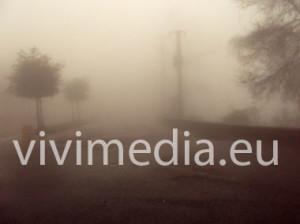 strada-pioggia-nebbia(2)-380x_vivimedia