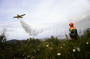 campagna-antincendio-boschivo-vivimedia