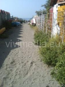spiaggia-vietri-marina-erbacce-luglio-2013-2-vivimedia