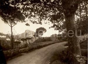 parisio-(1)-cava-de'-tirreni-paesaggio-foto-antica-vivimedia