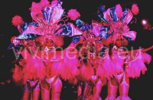 ballerine-latino-americano-cuc-cava-de'-tirreni-novembre-2013-vivimedia