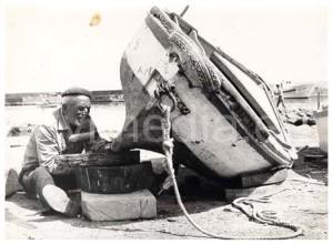 maestro-d'ascia-cantieri-barche-da-pesca- vivimedia