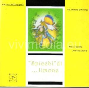 spicchi-di-sole-i-limoni-copertina--maria-olmina-d'arienzo-luglio-2015-vivimedia