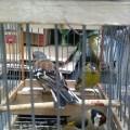 2-enpa-liberazione-uccelli-feriti-san-valentino-torio-marzo-2016-vivimedia