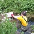 legambiente-3-pulizia-fiume-sarno-maggio-2016-vivimedia