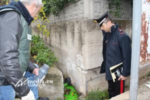 sequestro-impianto-frantoio-sversamenti-abusivi-salerno-novembre-2017-vivimedia