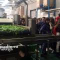 contadino-per-un-giorno-piana-del-sele-1-legambiente-dicembre-2017-vivimedia
