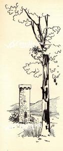 torre-longobarda-illustrazione-alberto-mattoni-la-badia-cava-de-tirreni-marzo-2018-vivimedia