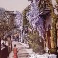 06-capri-in-cartolina-gennaio-2019-vivimedia